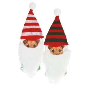 Pet Gnome Beard & Hat