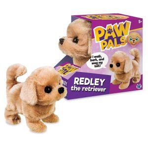 Redley the Retriever
