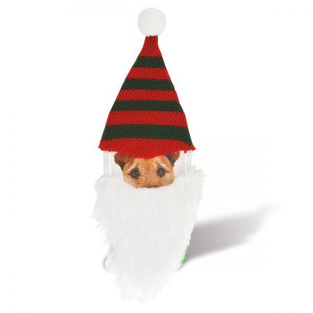 Pet Gnome Beard & Hat