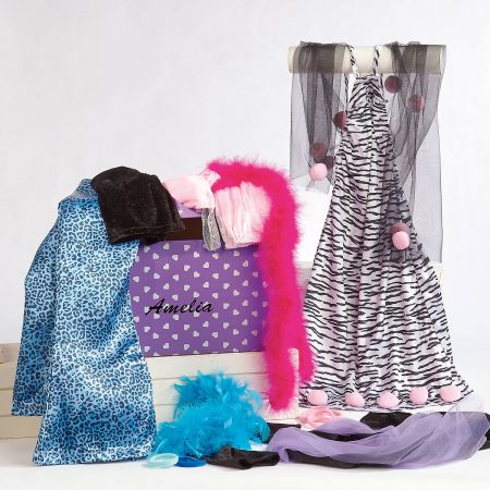 Dress-Up Trunk and Accessories