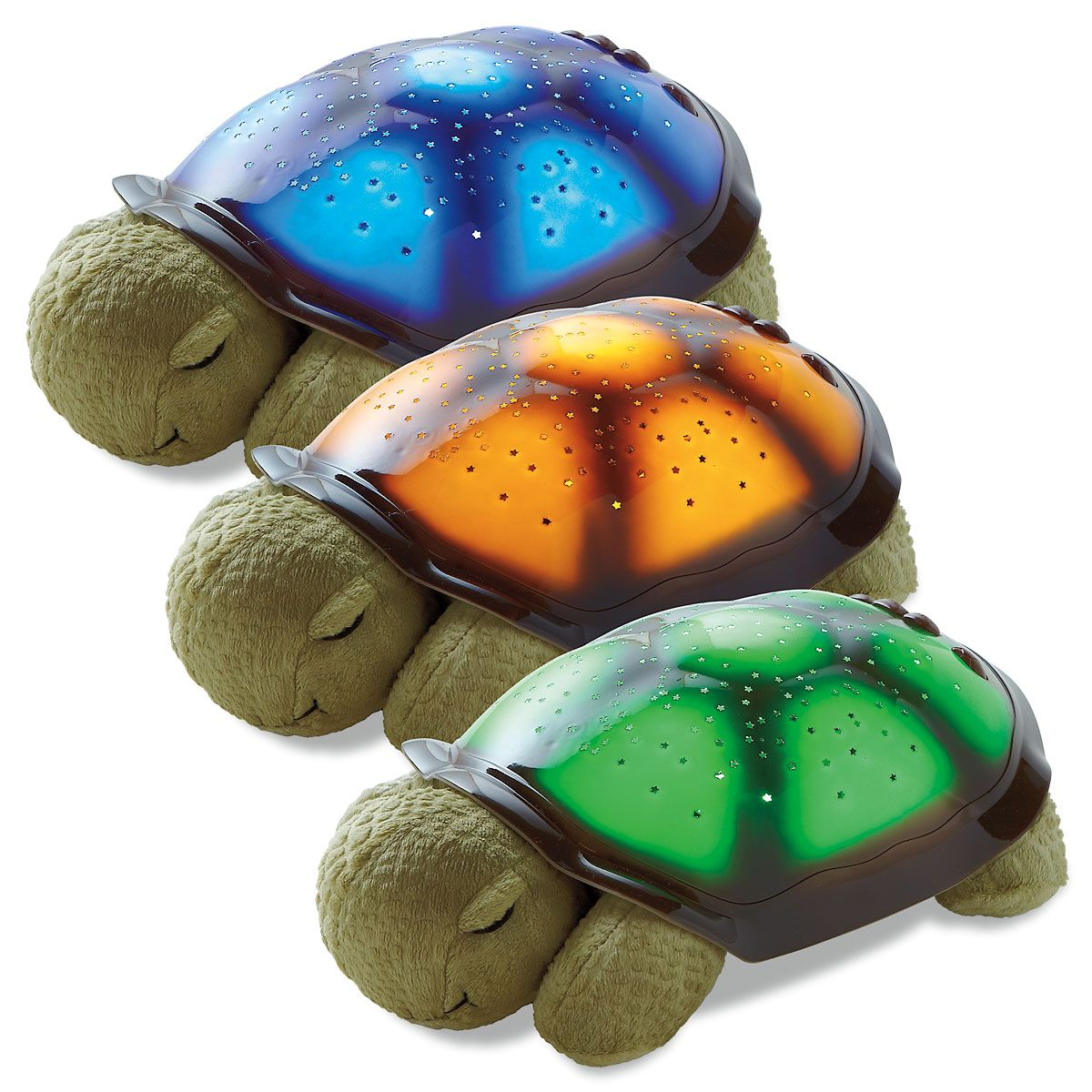 Turtle Twilight Night Light