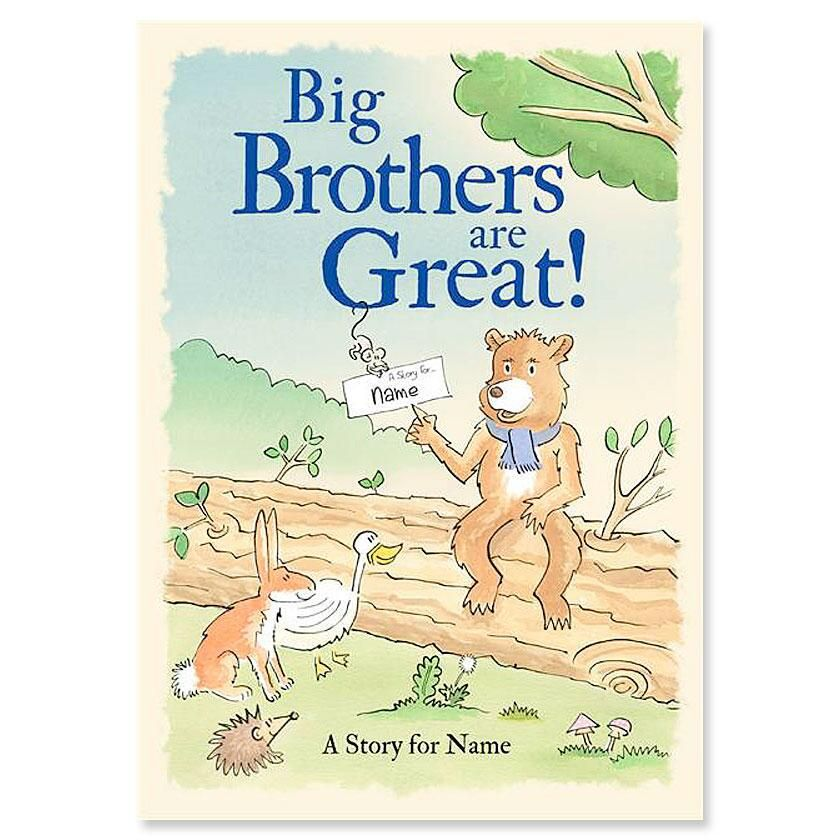 Big Brothers Are Great! Storybook