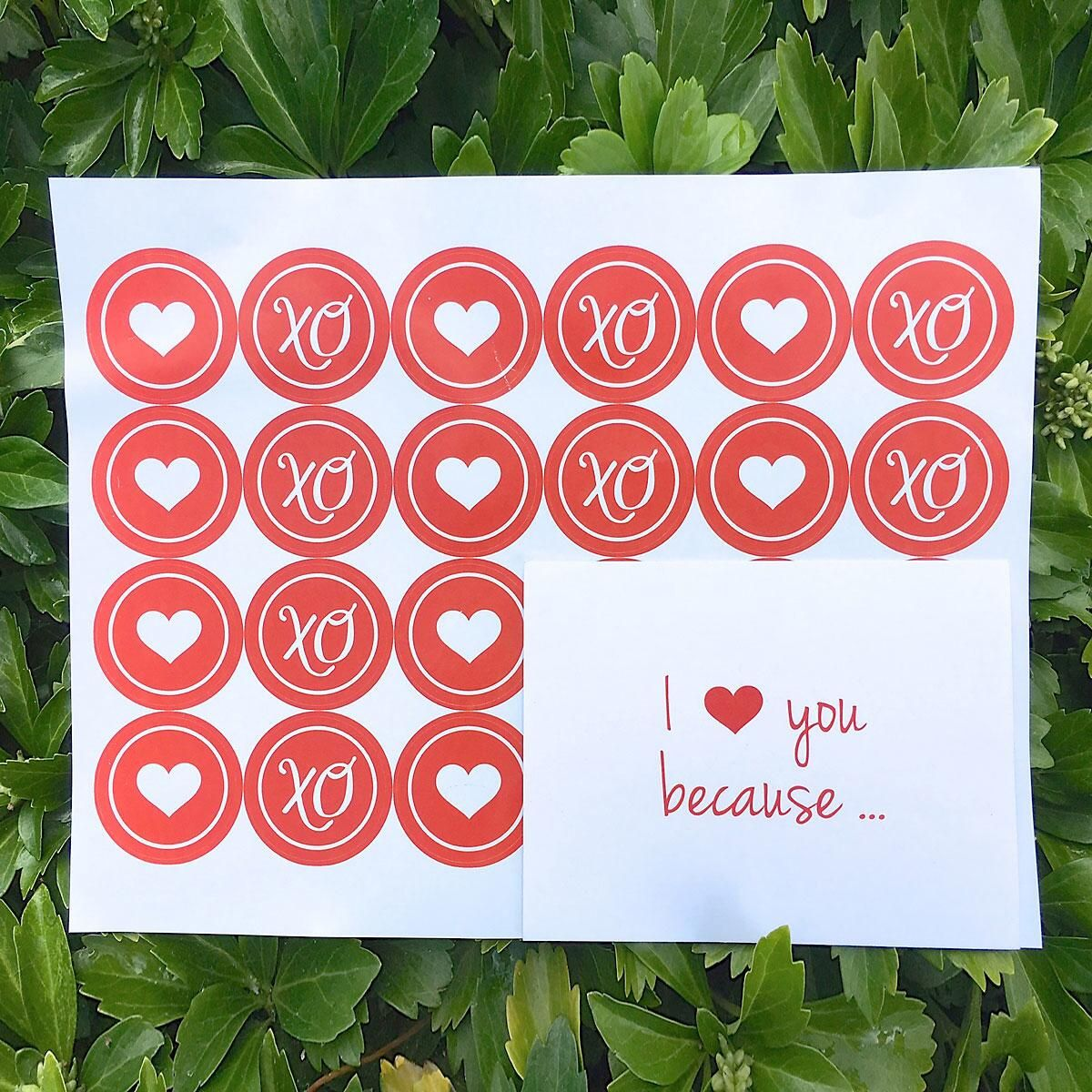 I Love You Because...Envelope Seals
