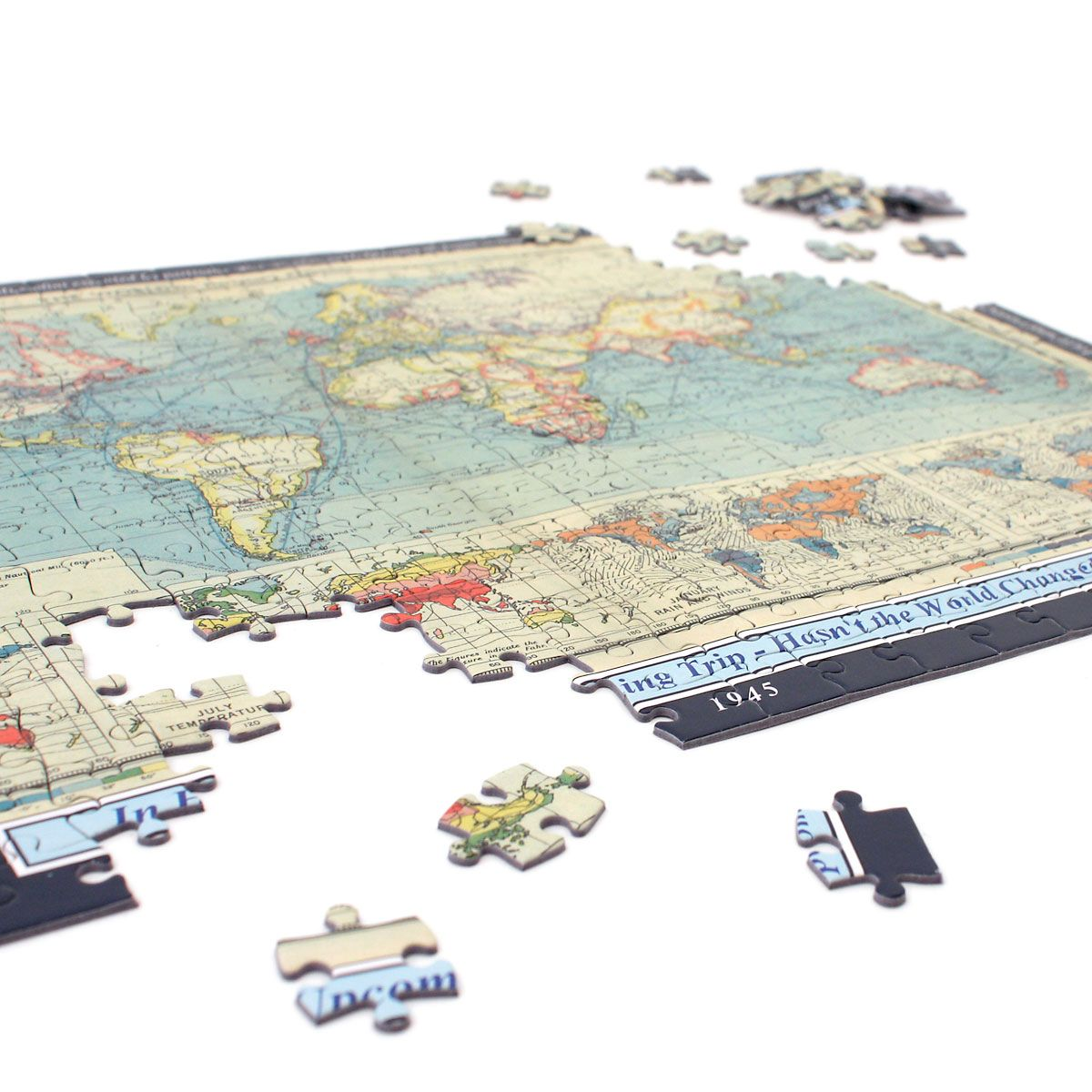 Your Year, Your World Map Puzzle Personalized